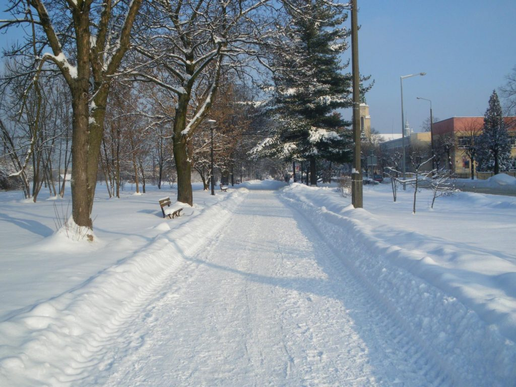 clearing the snow on pathways